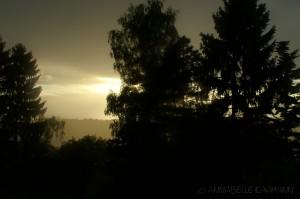 Goldenes Licht im Land der Phantasie. Foto: Annabelle